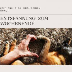 Entspannung zum Wochenende mit Hund – Online-Live-Seminar